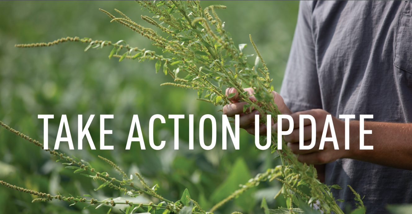 Take Action Update